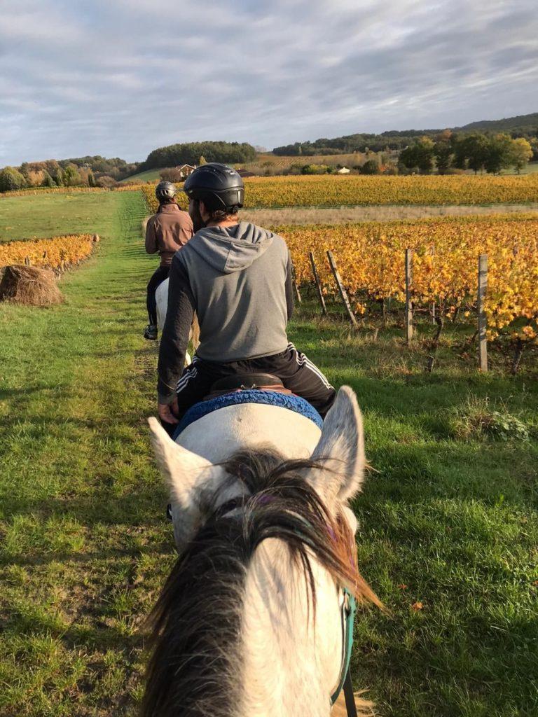 perigord pourpre a cheval